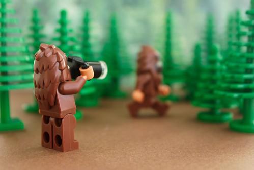 Bigfoot Sighting!