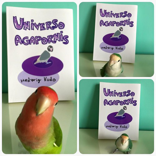 Ringo, Elvis y Blu con el libro Universo Agapornis