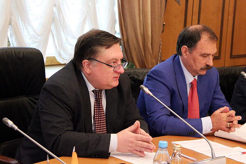 Андрей Туманов, Комитет ГД по информационной политике, информационным технологиям и связи
