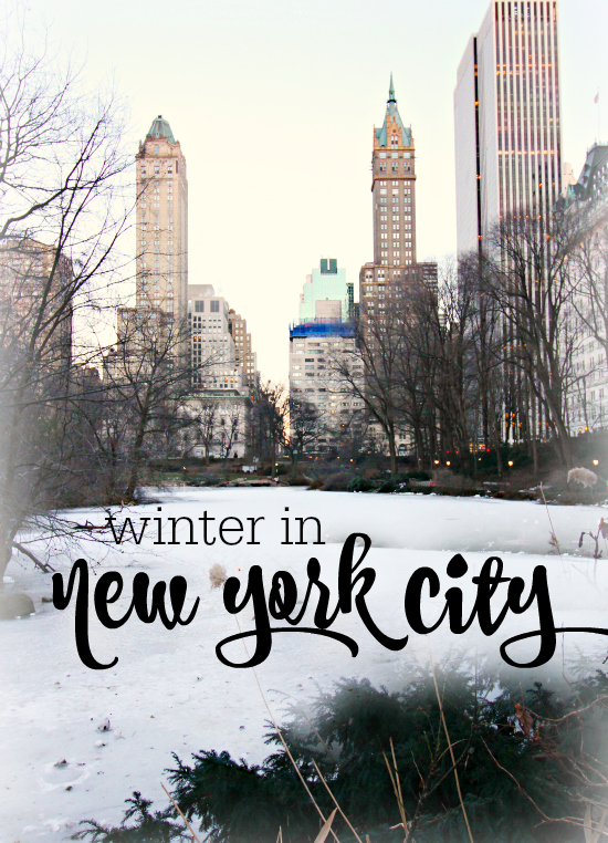 Trip report winter in new york city hi sugarplum for What do in nyc