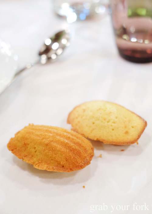 Complimentary madeleines at Bistrot Gavroche in Chippendale