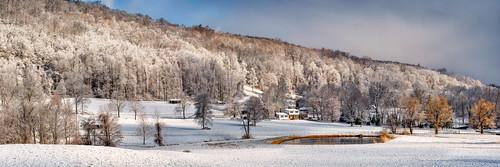 snow morninglight farm earlymorning snowcoveredtrees shenandoahroad