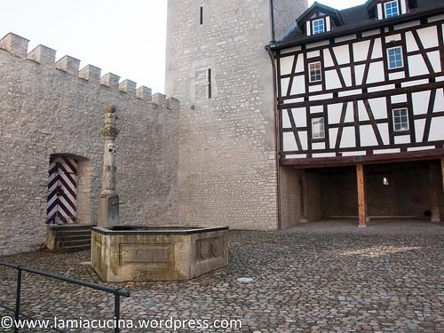 CH-5106 Veltheim- Schloss 2016 03 10_0440