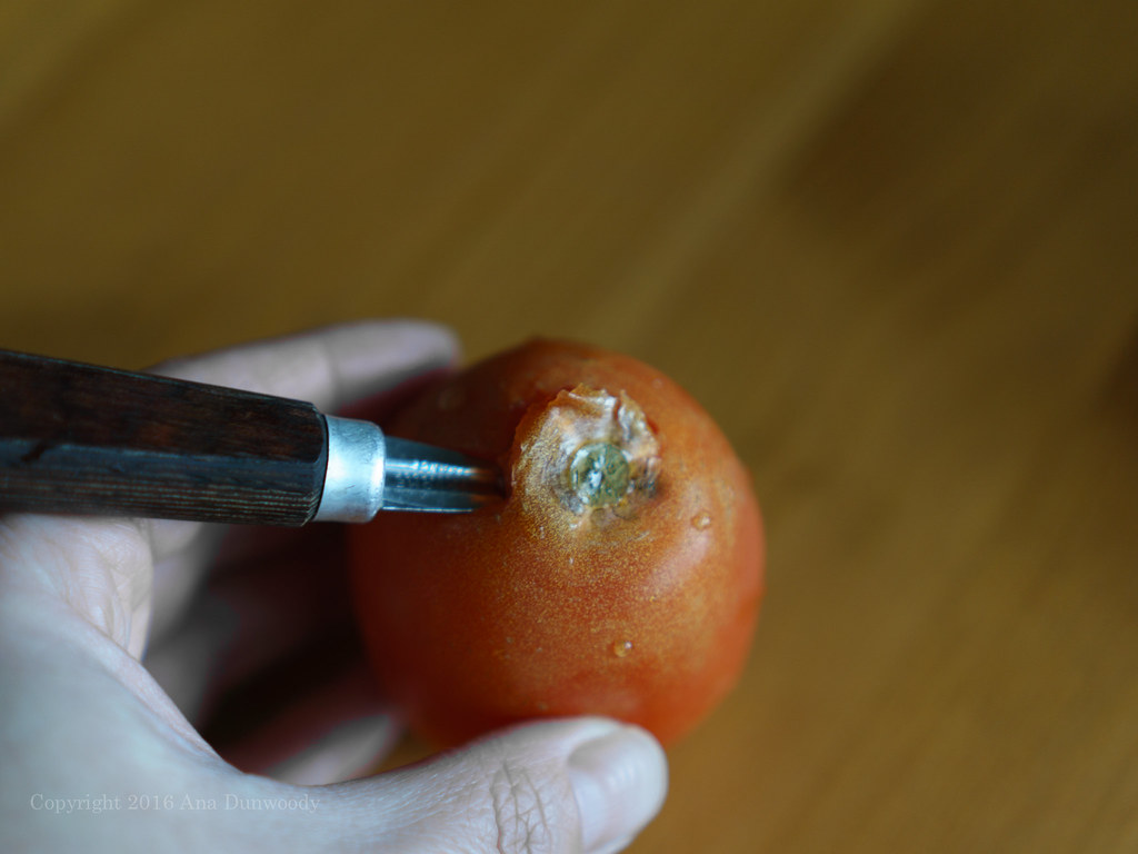 How to Core a Tomato #2