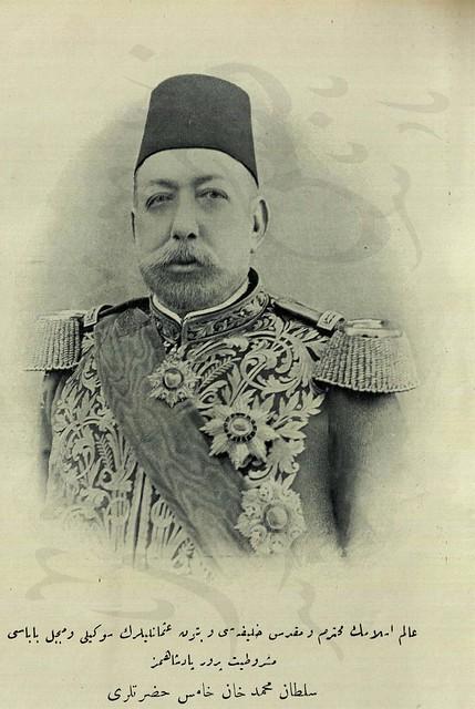 السلطان محمد الخامس سلطان الدولة في فترة نشاط الزهراوي