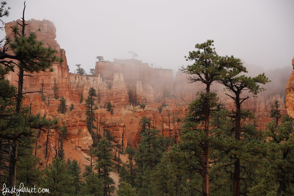 Bryce Canyon National Park_feistyharriet_2015 (8)