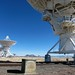 very large array by atelerix*books