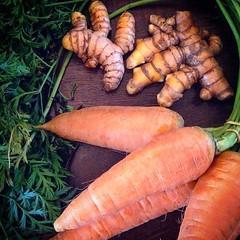 #fresh #tumeric #carrots #buylocal #alachua #floridalife #agriculture #farmersmarket #shakshukababy