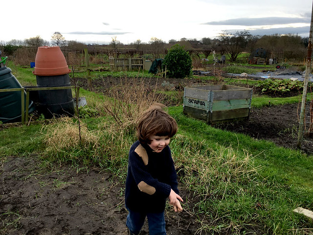 allotment playing