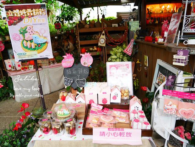 台北內湖一日遊採草莓下午茶草莓園 (5)