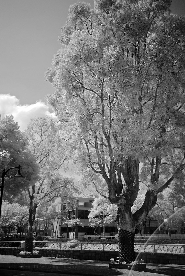 infrared snap