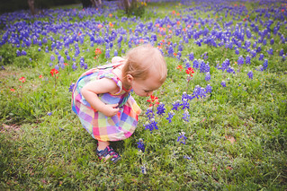 18Month-BlueBonnet-15