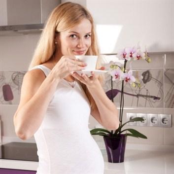 Có nên dùng thức uống dành cho người ăn kiêng khi mang thai?