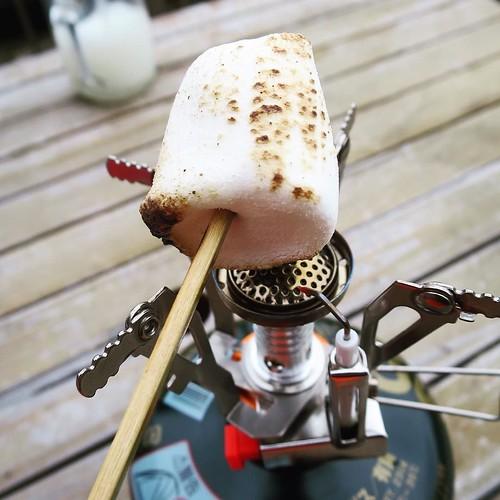 マシュマロを串に刺して焼く。