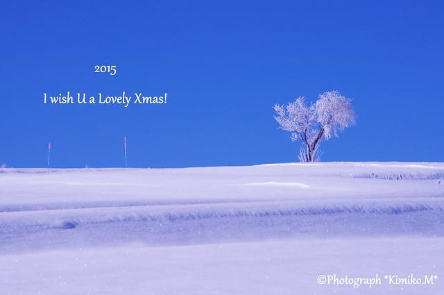 I wish U a Lovely Xmas!
