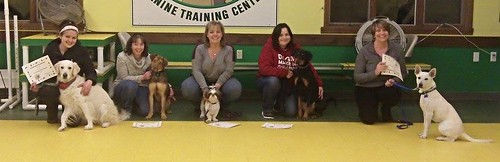 Pennys Basic Obedience Class Graduation - Lapdog Creations