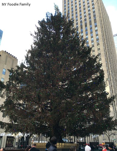 Tree in Rockefeller Center