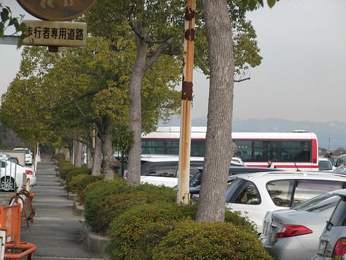 京都競馬場の駐車場を走るバス