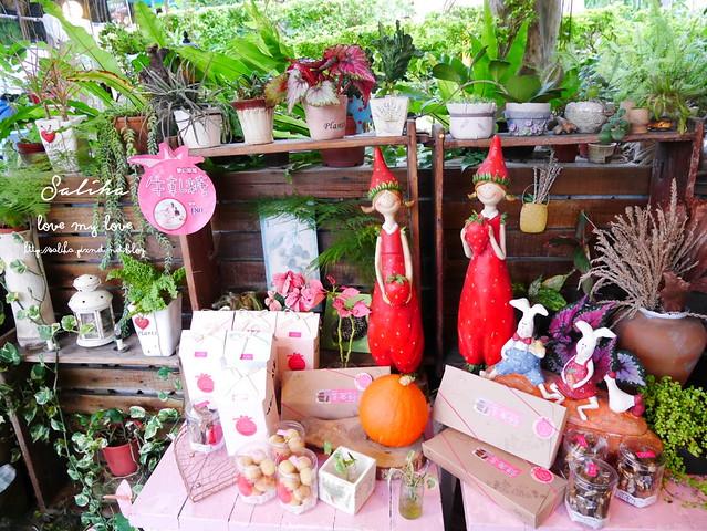 台北內湖一日遊採草莓下午茶草莓園 (16)