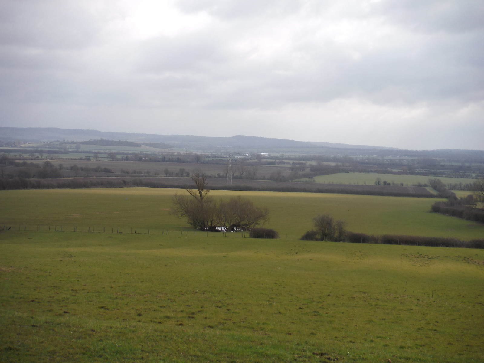 Chiltern View from field at Helsthorpe Farm SWC Walk Cheddington to Leighton Buzzard