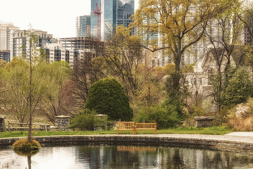 city trees atlanta house canon buildings reflections spring pond view oasis benches botanicalgarden skiline newleaves