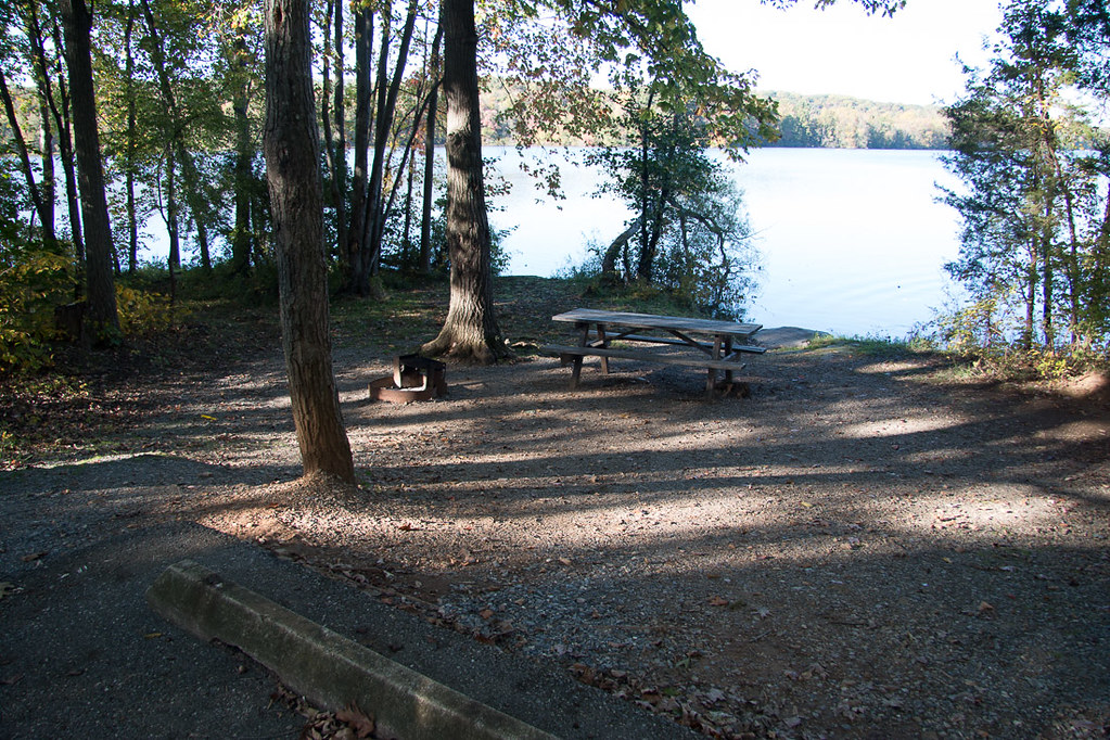 Site 116 at Gifford Pinchot State Park