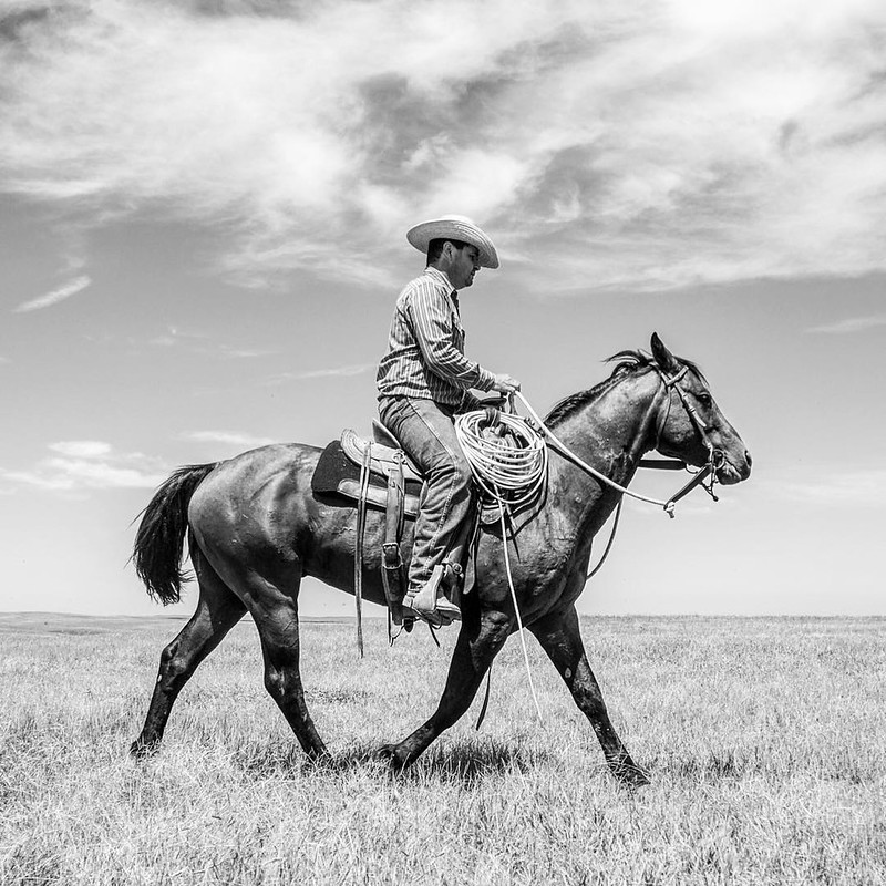 I'm certain that it's fairly safe to say that cowboys are an icon of the American West. And frankly, I wish I had the opportunity to photograph more of them, but I'm usually horseback doing a job when the opportunity would present itself. This past summ
