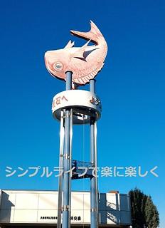青春18兵庫、明石駅前の鯛