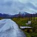 See nature bench. Ver naturaleza en banco. by hajavitolak