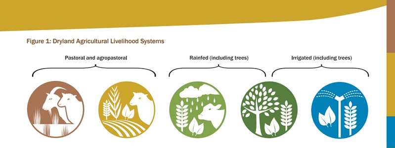 Agricultural Livelihood Systems