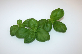 03 - Zutat frisches Basilikum / Ingredient fresh basil
