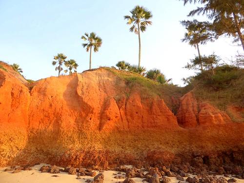 landscape gambia thegambia p1000357