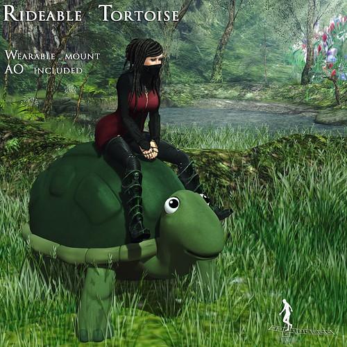Rideable Tortoise