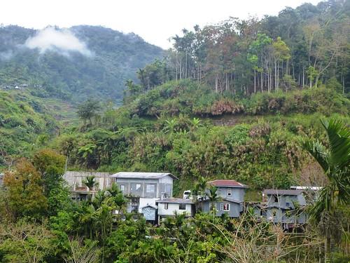 P16-Luzon-Mayoyao-Terrasses (16)