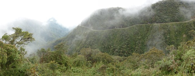 pano 4 - forêt route de la mort-small
