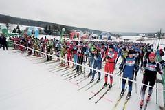 Šumavský skimaraton