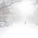 White Out Conditions in Brooklyn by joe holmes