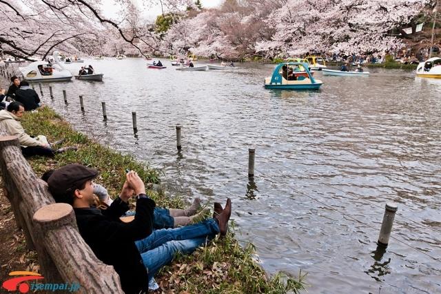 Những điểm hẹn hò Những điểm hẹn hò lãng mạn nhất Tokyo Phần 1 24074939910 e659d65e96 o