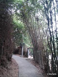 CIRCLEG 遊記 坪洲 一天遊 一日遊 圖文 船 香港 (25)