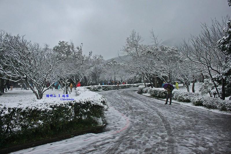 2016-台北陽明山-瑞雪-難得一見的雪白山景-17度C隨拍 (27)