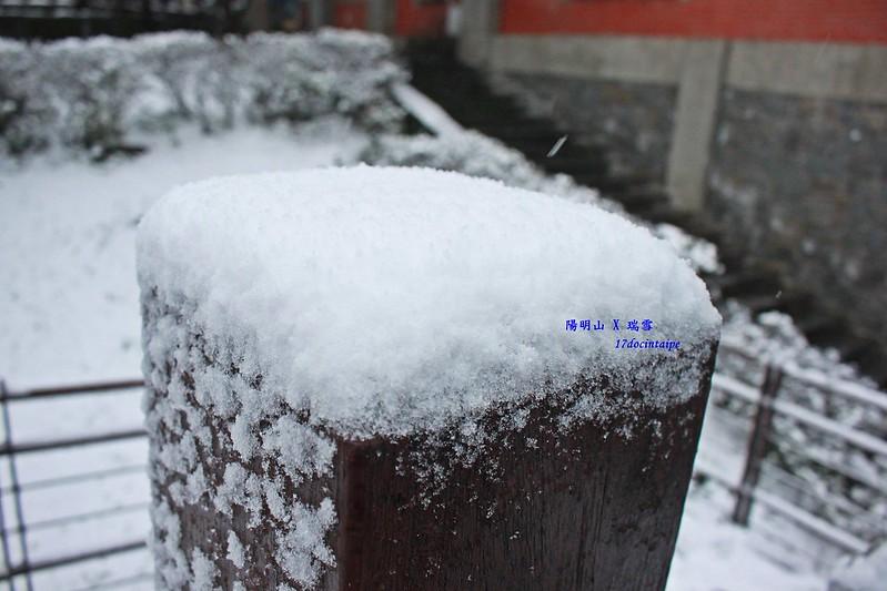 2016-台北陽明山-瑞雪-難得一見的雪白山景-17度C隨拍 (48)