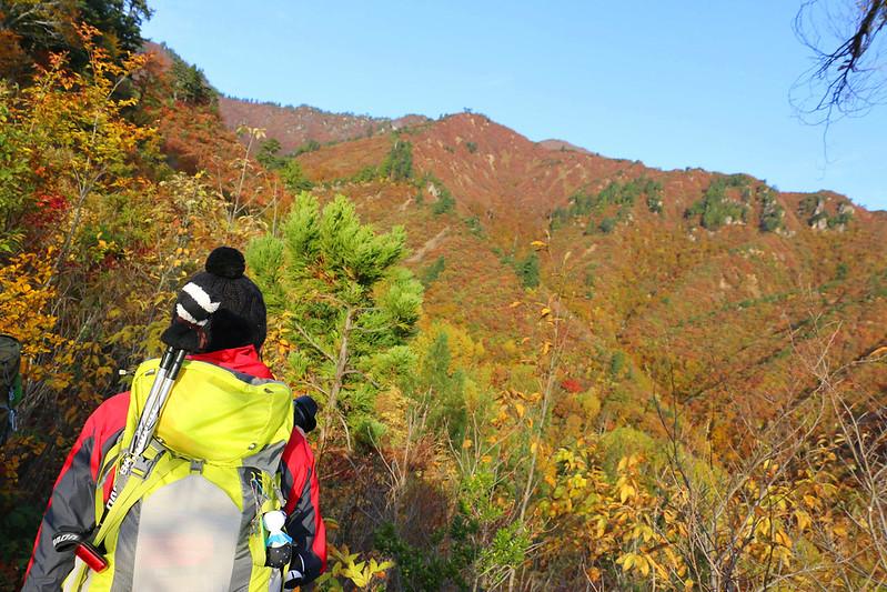 20141018-平ヶ岳-0066.jpg