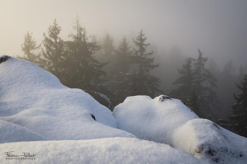 Randonnée sur la montagne d'Entrevernes