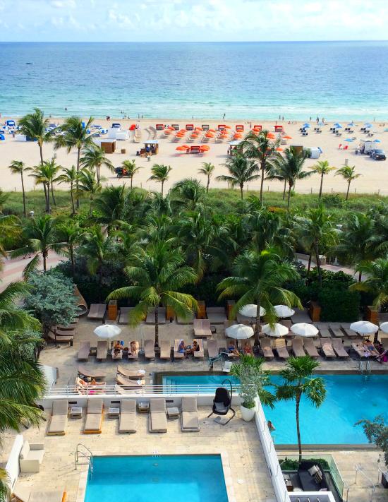 Hi Sugarplum | Trip Report: Miami Beach