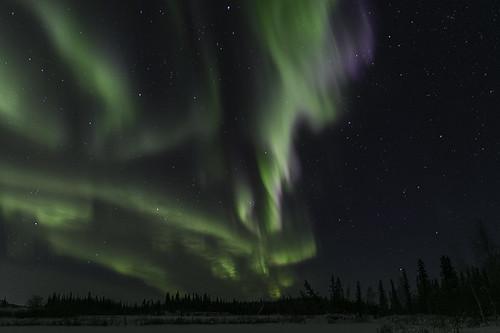 Aurora Feb 8, 2016-9180