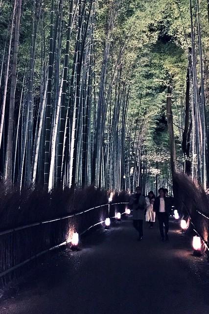 Kyoto Arashiyama Hanatouro 2015