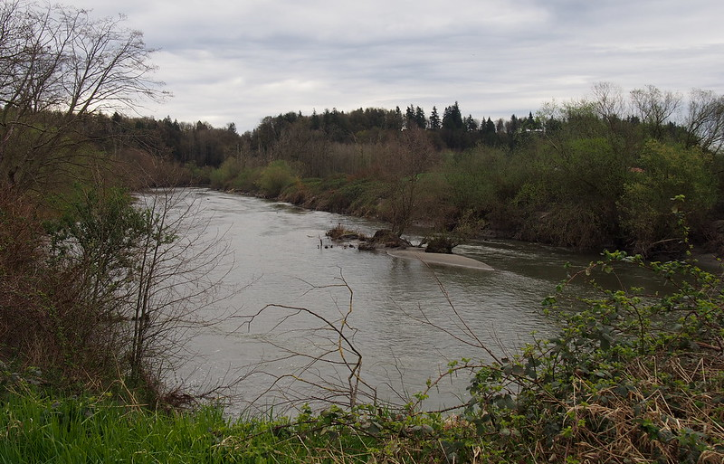 Old Stillaguamish River