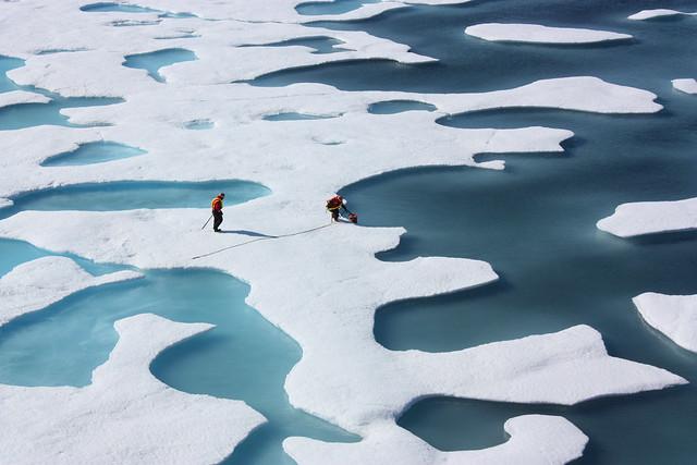 Melting polar ice caps, Arctic Circle. Courtesy Creative Commons