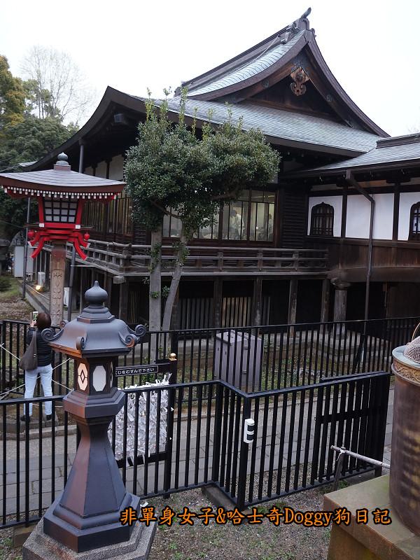 日本東京上野恩賜公園櫻花09
