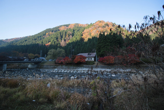 20141122-武奈ヶ岳&京都ライトアップ-0053.jpg